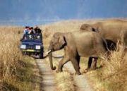 India Adventure Tour (  8 Nights )