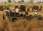Indian Wildlife Safari Tour (  21 Nights )