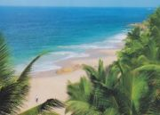 Kerala Beaches And Forests Tour (  )
