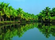 Kerala Package With Back Waters