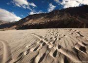 Leh Festive Tour of Ladakh