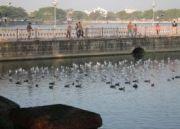 Amazing Ahmedabad Tour