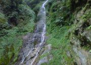 Majestic Assam Tour