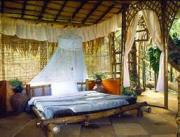 Wayanad Tree House Package ( 3 Days/ 2 Nights )