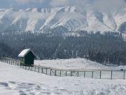 Srinagar Holiday