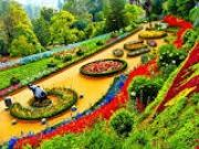 Wonderful Ooty Tour