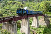 Ooty Coorg Tour Package From Bangalore 5 Days