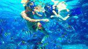 Andaman Reef Exclusive 07 Nights & 08 Days (  7 Nights )