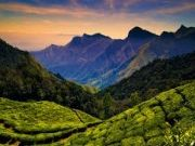 Nilgiris Hill Tour