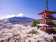 Just Japan ( 8 Days/ 7 Nights )