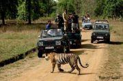 Assam Meghalaya Tour ( 7 Days/ 6 Nights )