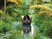 5n/6d Hilly Back Water And Beaches(munnar,alleppey,kovalam)