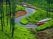 Kerala Tour Package For 4night 5days