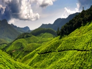 Munnar- Houseboat Tour Package