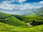 Cochin-munnar-thekkedy-alleppey Tour Package