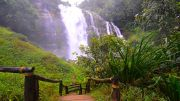 Ihc-47 Bangalore Ooty Tour Package