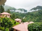Aranyaka Resorts, Munnar Upto 25% Off