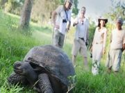 5-Day Galapagos Island Hopping Tour