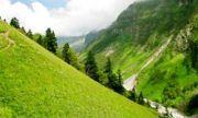 Shimla Kullu Manali Honeymoon Tour Packages (  )