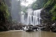 Karnataka Sirsi Package (  3 Nights )