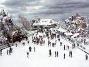 Shimla, Manali