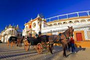 Spanish Paradors Tour ( 8 Days/ 7 Nights )