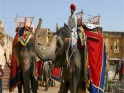 Golden Triangle Tour Delhi-jaipur-agra