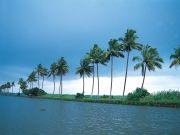 Really Spice Lands - Kerala ( 6 Days/ 5 Nights )