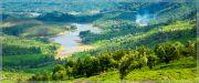 Scenic Munnar Tour