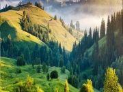 Misty Hills Of Nilgiris - Ooty & Kodaikanal