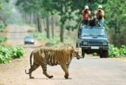 IHC-57 Ahmedabad Gir National Park Weekend Tour ( 3 Days/ 2 Nights )