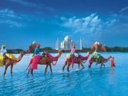 Rajasthan Tour With Taj Mahal (  )