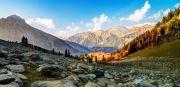 Beautiful Kashmir. (  4 Nights )