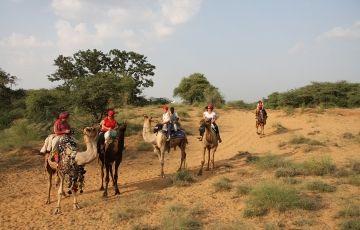 Jodhpur - Jaisalmer - Bikaner Deluxe Package