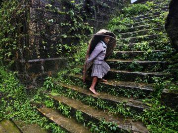 Splendid Assam and Meghalaya Tour