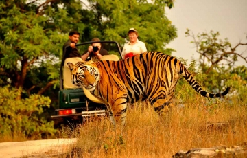 Corbett Camping Tour Package