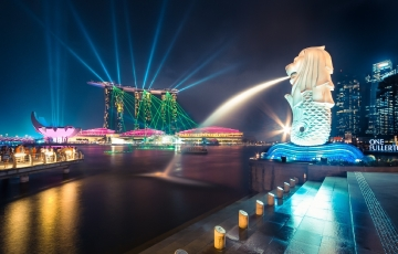 Singapore Delight - With Frills