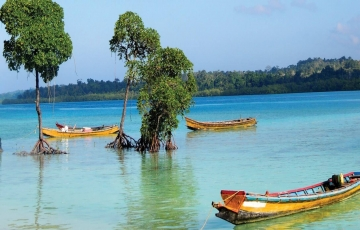 Andaman Package With Neil Island