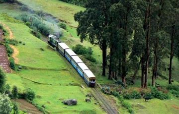 South Indian Tour Packages (Wild Life,Pilgrimage, Ayurveda)