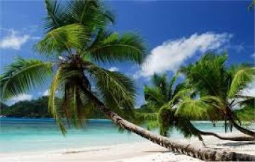 Seychelles Tour Package