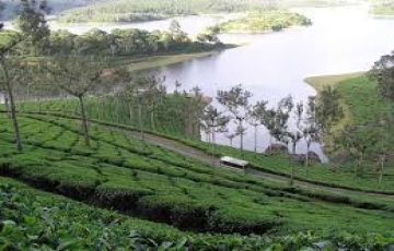 Kerala Holiday Package 3 Days