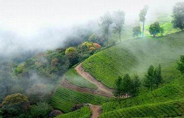 Romantic Kerala (4 Nights /5 Days)