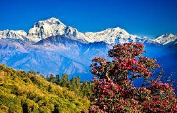 Explore Kathmandu 4 Nights