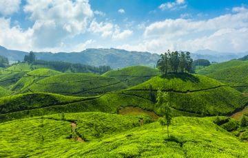 Refreshing Kerala 5N/6D