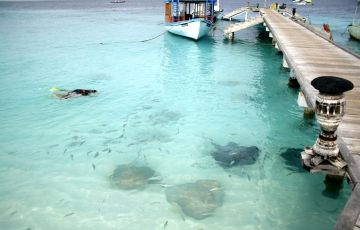 Maldives Package 4N/5D