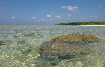 Andaman Cost Saver Package