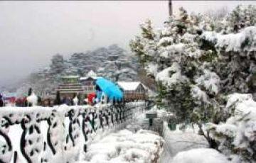 Shimla Family Trip - Toy Train