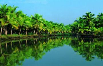 Kerala Relaxing Ayurveda & Yoga Tour