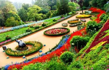Ooty Package For 3Night/4Days