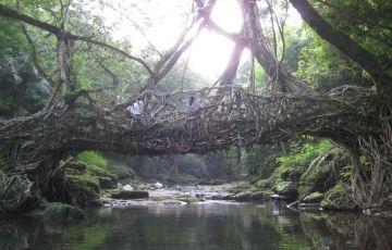 Meghalaya Tour